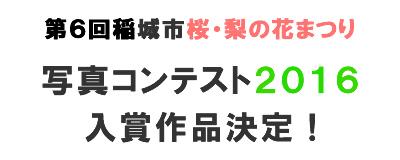 第5回稲城市桜・梨の花まつり写真コンテスト2015入賞作品決定!